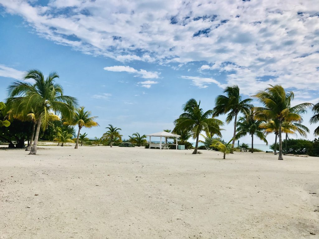 Palm Cay